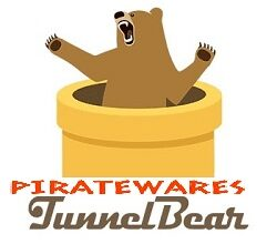 tunnel bear crack